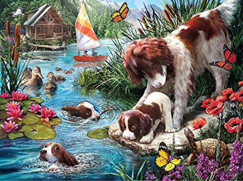 Pintar por números Animales Perros - Lienzos para Pintar por números con Pinceles y Colores Brillantes - Cuadro de Pinturas con numeros sobre Lienzo Dibujado Adultos y niños