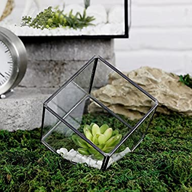 Noah Decoration Hand-Blown and Handmade Cube Succulent Plant Glass Terrarium/Decorative Votive Candle Container for Home and Wedding Indoor and Outdoor Decoration Size Small