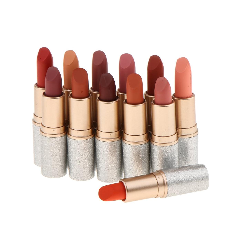 SONONIA ベルベットマット 口紅 リップグロス リップスティック 唇メイク 人気色 12色セット コスメ 防水 長持ち