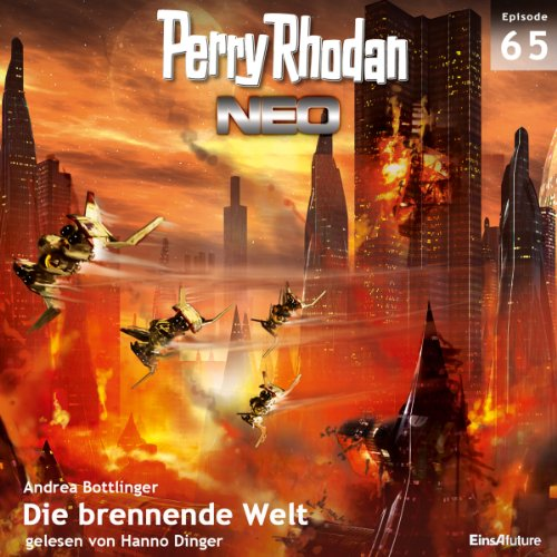 Die brennende Welt audiobook cover art