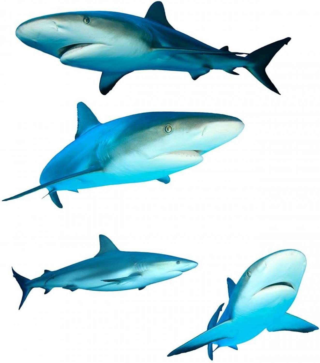 Four Reef Sharks Wall Decal Sticker Set Wallmonkeys Individual Peel and Stick Graphics on a (24 in H x 22 in W) Sticker Sheet WM130947