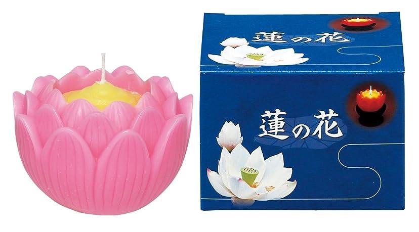 嵐からシェードマルエス ろうそく 蓮の花 大 ピンク 箱入