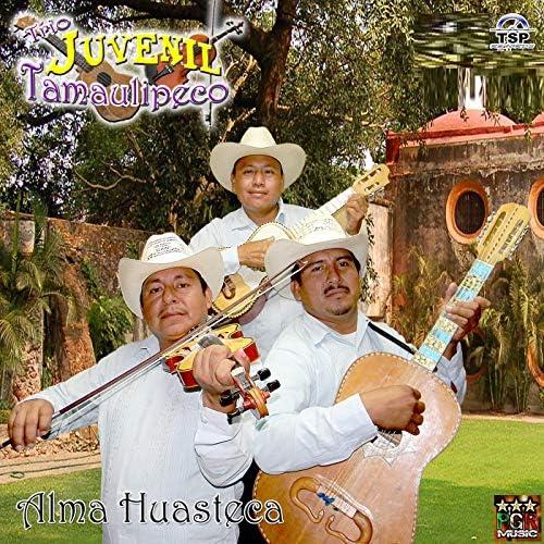 Trio Juvenil Tamaulipeco