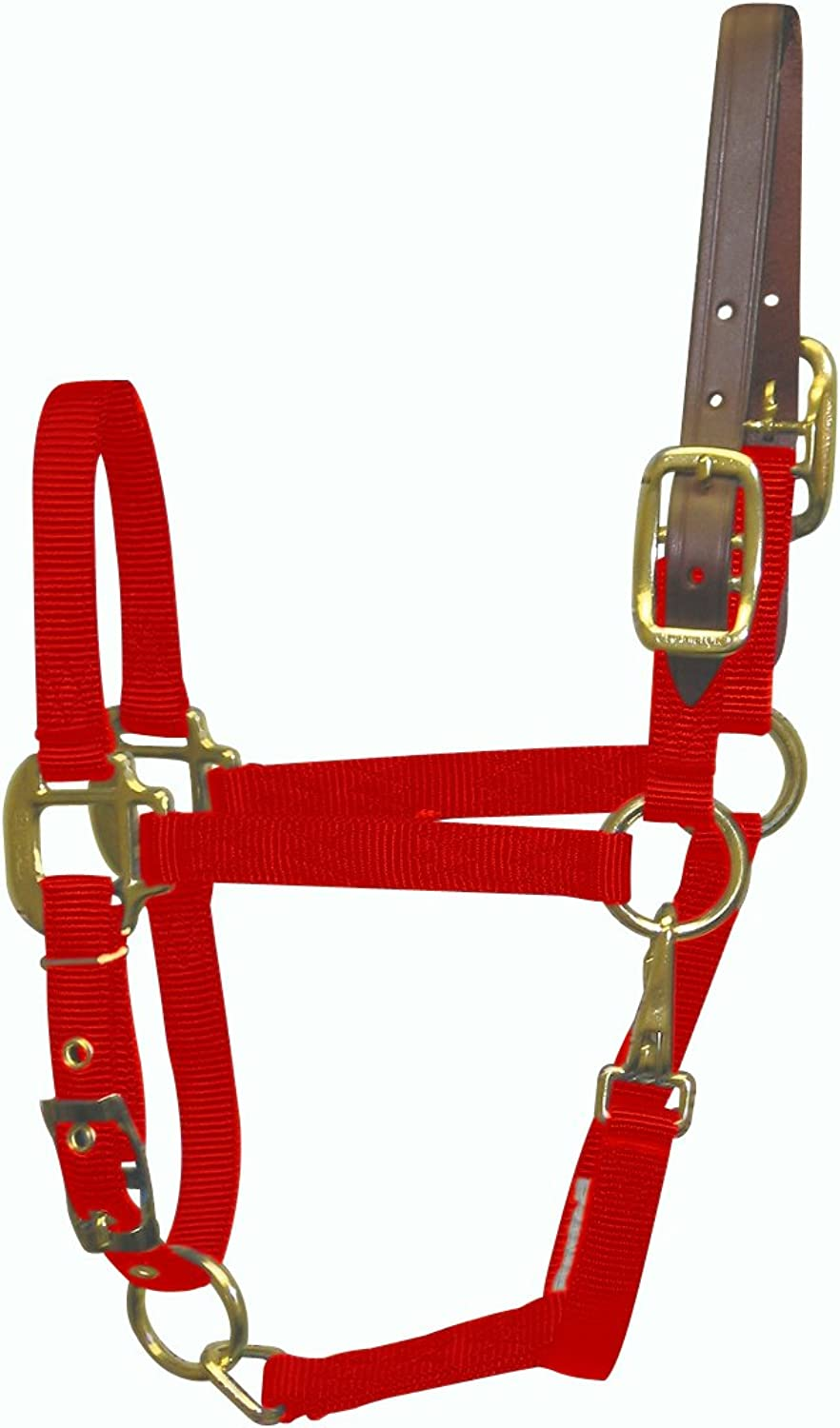 Hamilton Halter Company Adjustable Halter with Leather Headpole