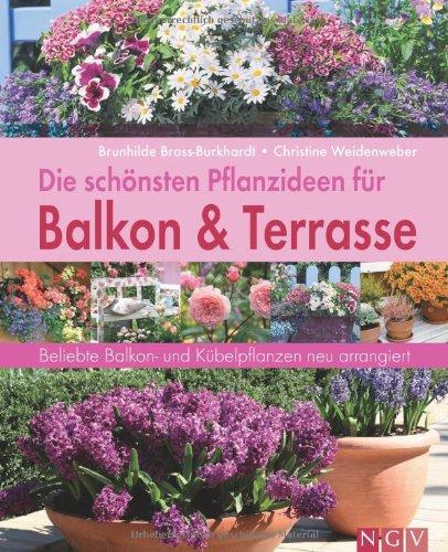 Die schönsten Pflanzideen für Balkon & Terrasse. Beliebte Balkon- und Kübelpflanzen neu arrangiert