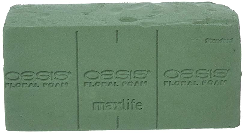SMITHERS Oasis Pack of 4 Standard Floral Foam Bricks. New