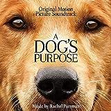 Songtexte von Rachel Portman - A Dog's Purpose