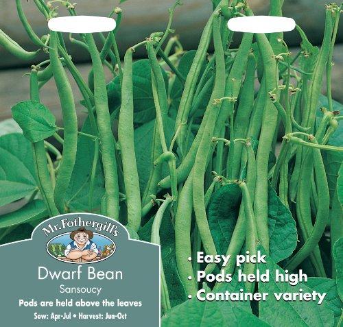 Mr. Fothergill's 19265 Paquet de 100 graines de haricot nain Sansoucy