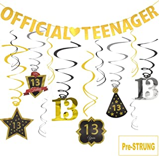 Best 13th birthday party decorations boy Reviews