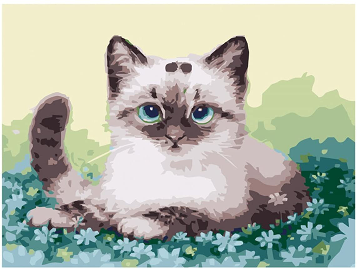 Diy Oil Painting Paint by Number Kit for Adults Beginner 16x20 inch - Cat Lying on Flower, Drawing with Brushes Christmas Decor Decorations Gifts (Frame)