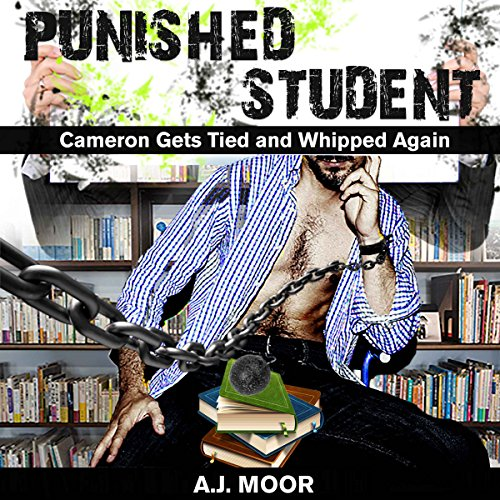 Punished Student audiobook cover art