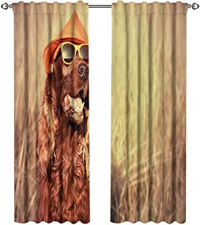 Animal, Curtains Pattern, Funny Retro Irish Setter Dog Wearing Hat and Sunglasses Humorous Joyful Picture, Curtains Girls Bedroom, W84 x L84 Inch, Redbrown Tan