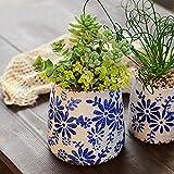 Vintage Blue & White Porcelain Flower Pot,Chinese Style Ceramic Planter with Drainage,Small Decorative Plant Pots Art Glaze Porcelain Vases Home Ornament-Small 9x10cm(4x4inch)