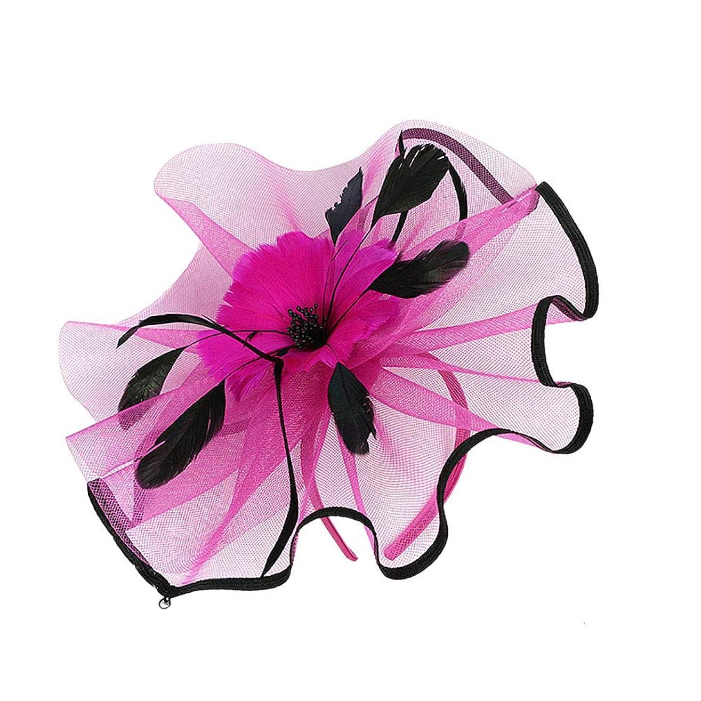 デンマーク語お母さん言うLURROSE 花メッシュフェザーハットクリップ魅惑的な帽子メッシュフラワーヘアクリップヘッドバンドダービーウェディングティーパーティーヘッドウェア(Rosy)