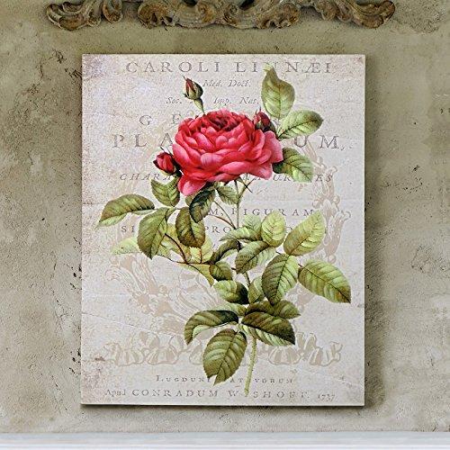 Blanc Mariclo Impresión sobre Lienzo - Cuadro impresión - Cuadro decoración - Canvas Vintage Rústico Shabby Chic - Floral/Vintage - 45x56 - Lienzo fijado en Bastidor de Madera