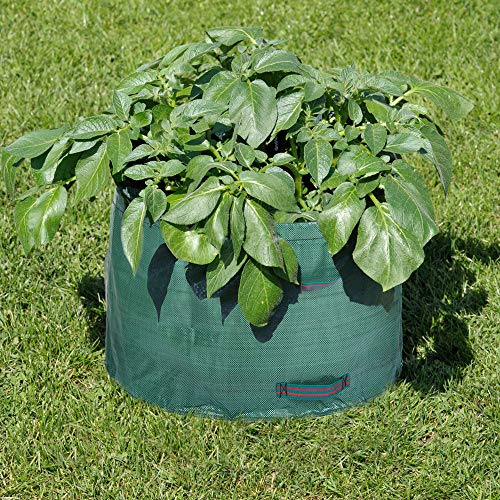 Amazing Deal AloPW Yard Waste Bags 63 Gallons Garden Potato Grow Bag Reusable Gardening Bag Foldable...