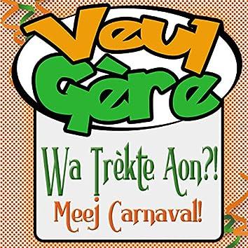 Wa Trèkte Aon?! Meej Carnaval!