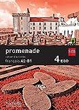 Cahier de français. 4 ESO. Promenade - 9788467578041