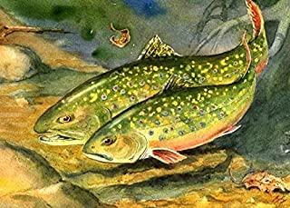 Brook Trout in Love Watercolor Painting fish art print Cottage Décor Great fisherman Gift by Barry Singer