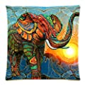 CoolDream Aztec Elephant Decorative Pillow Case Protector