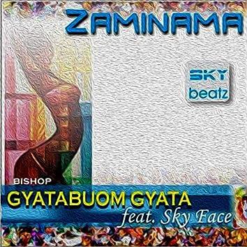 Zaminama (feat. Skyface)