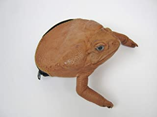 Cane Toad Coin Pouch: Natural Brown (1019-10L-NA) C15
