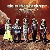 Funky Journey
