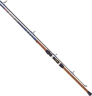 Amazon Com Fishing Rods 12 Feet Above Rods Fishing Sports Outdoors