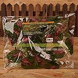 JRTAN&Pet Reptiles Enredaderas Jungle Vines Artificial Ivy Leaf Hábitat Simulación de Plantas de vides de paisajismo, Hojas de Perilla (Verde).
