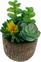 XIANGBAO-Artificial plant Realistic Plants Unreal Succulents with Faux Tree Texture Potted Lovely Assorted Decorative for Menage or Office (Color : Green)