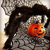 Oblique Unique® Tischläufer Spinnennetze und Spinnen mit Spitze Tischband Tisch Läufer Tischdeko für Halloween Deko Dekoration Schwarz 45cm breit 1,8m lang - 4