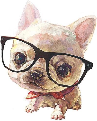 Tu satisfacción es nuestro objetivo JHFVB Gafas para Perros Bricolaje Bricolaje Bricolaje Sala de Estar Digital Pintada a Mano Pintura al óleo Pintura al óleo Animal Lindo Perro y Gato  Envío rápido y el mejor servicio
