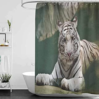 Shower Curtains for Bathroom Star Wars Tiger,Bengal Symbol Swimming White Beast with Black Sprites Large Cat Animals Having Fun, Teal White W69 x L90,Shower Curtain for Women