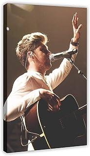 P/óster de lona para dormitorio 30 x 45 cm habitaci/ón decoraci/ón deportiva paisaje One Direction Rock Singer Niall Horan 4 regalo marco1 oficina