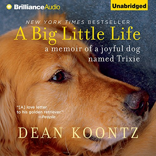 A Big Little Life audiobook cover art