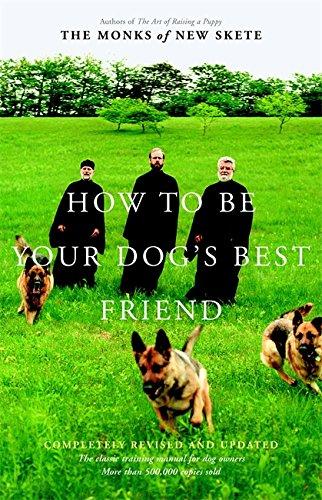 كيف تكون أفضل صديق لك الكلب: دليل
