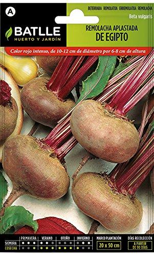 Semillas Hortícolas - Remolacha mesa Aplastada de Egipto - Batlle