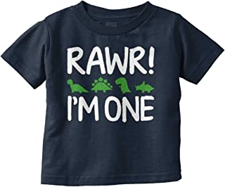 Rawr Im One Dinosaur First Birthday T-Rex Infant Toddler T Shirt