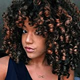 AISI QUEENS Afro Wig Synthetic Kinky Curly Wig for Women Dark Brown Curly Hair with Bangs 2 Tone Brown Mixed Blonde Color African Short Wig for Black Women