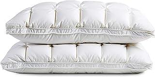 ZZD Oreillers Standard, Oreillers De Lit Complets pour Dormir avec Tissu De Velours De Luxe, Oreillers Hyperallergéniques ...