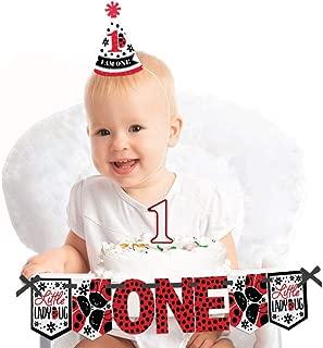 Big Dot of Happiness Happy Little Ladybug 1st Birthday - First Birthday Girl Smash Cake Decorating Kit - High Chair Decorations