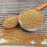 Senfsaat ganz und gelb | rein | Senf Saat | Senfkörner | Senfkorn | Senfsamen | gesund | Premium Qualität | Gelbsenf | Gewürz | Würze | naturbelassen | Frischebeutel | 2500g