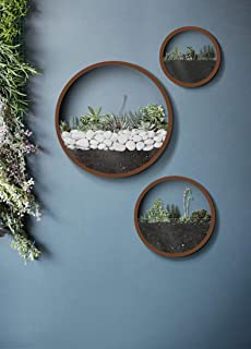 Set of 3 Round Wall Hanging Planters, Air Plant Holder, Metal Plant Terrarium, Wall Metal Vase in Brown, Round Fairy Garde...