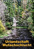Urlandschaft Wutachschlucht (Tischkalender 2017 DIN A5 hoch): Deutschlands größter Canyon
