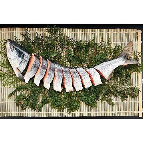 ( 産地直送 お取り寄せグルメ ) 北海道日高の天然新巻鮭(半身切り身)