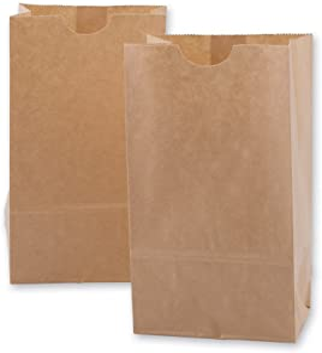 DelightBox Mini Kraft Paper Bags 100 per Pack