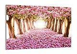 Cuadro sobre vidrio - Impresiones sobre Vidrio - Árbol flores cereza naturaleza - 100x70cm - Decoracion de Pared - Impresión en Vidrio - Cuadro en vidrio - Cuadro de Cristal - GAA100x70-2794