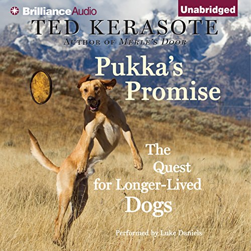 Pukka's Promise audiobook cover art