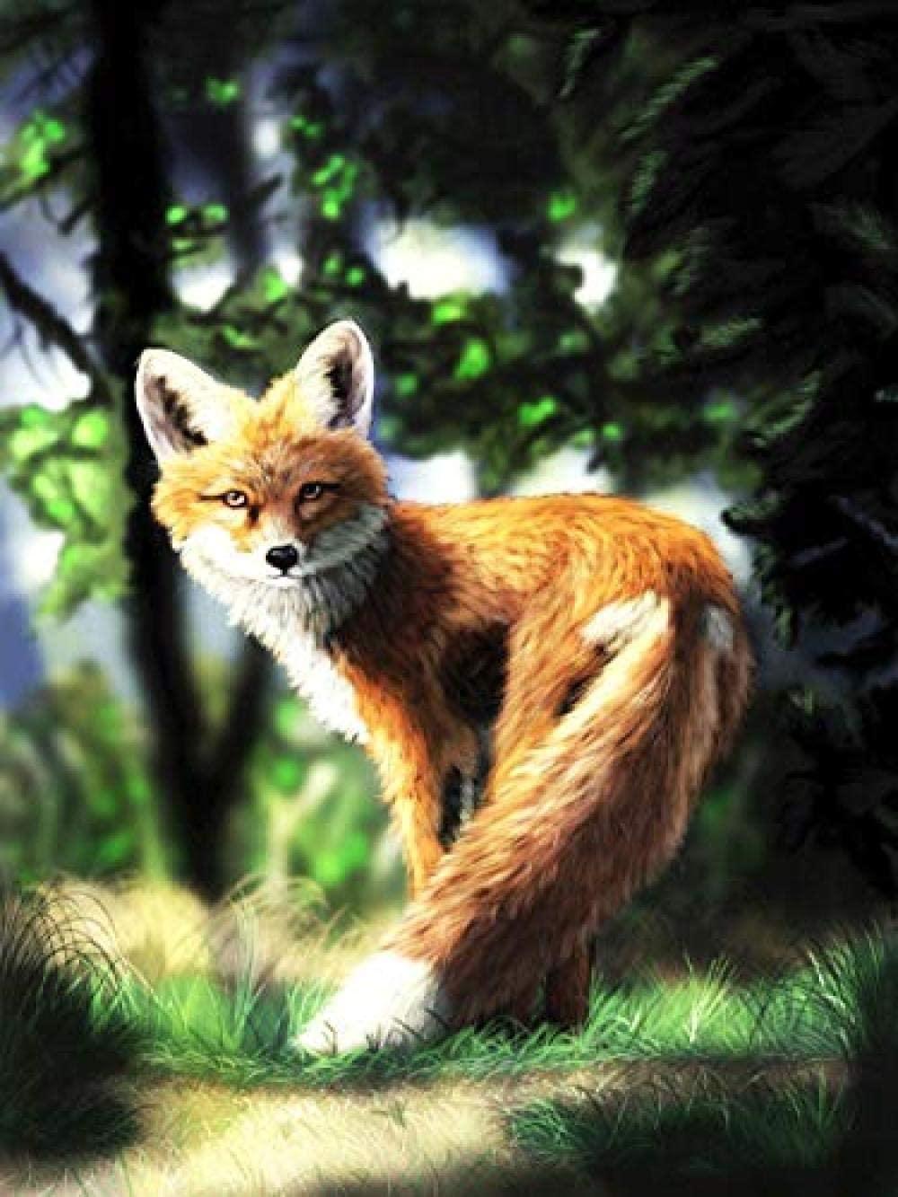 Stamped Cross Stitch Kits Beginners Embroidery Adult Spring new work one after another 16x Fox for A surprise price is realized