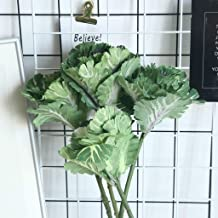 Best fake cabbage leaves Reviews